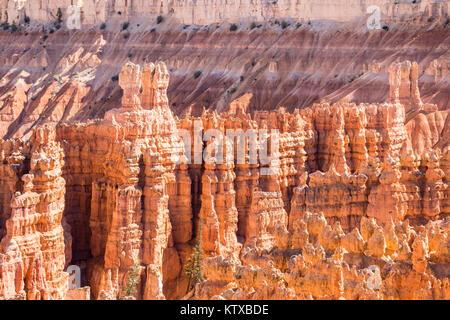 Anzeigen von hoodoo Formationen von den Navajo Loop Trail im Bryce Canyon National Park, Utah, Vereinigte Staaten - Stockfoto