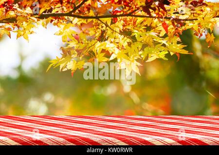 Picknicktisch mit Jananese ahorn Baum Garten im Herbst. - Stockfoto