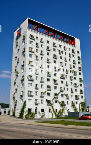 Hoyerswerda, Hoyerswerda Neustadt, gereinigt, vorgefertigte Gebäude Lausitztower, sanierter Plattenbau Lausitztower - Stockfoto