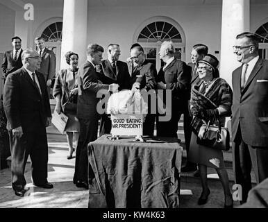 Präsident John F. Kennedy und Senator Everett M Dirkson ein Thanksgiving Truthahn vom Geflügel und Ei National Board - Stockfoto