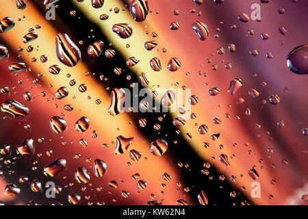 Regen fällt auf bunten Hintergrund Wasser fällt auf Glas gegen Rot, Gelb, Schwarz und Rosa Hintergrund - Stockfoto