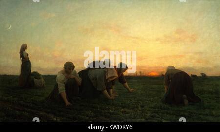 Die JÄT-, von Jules Breton, 1874, Französische Malerei, Öl auf Leinwand. Frauen Bauern ziehen Disteln und Unkräuter - Stockfoto