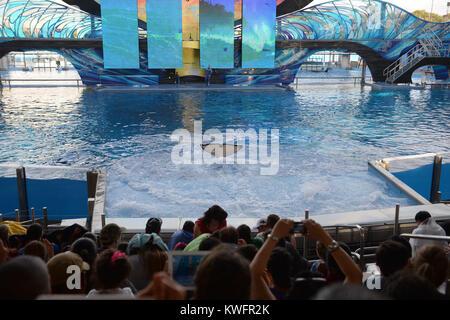 ORLANDO, FL - 15. August: SeaWorld hat einen neuen 10-Mio.-Gallone Killer whale Umfeld, in San Diego, fast das Doppelte - Stockfoto