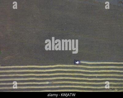 Luftaufnahme der Ernte - Stockfoto