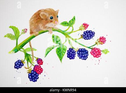 Gemälde von Maus auf Brombeeren - Stockfoto