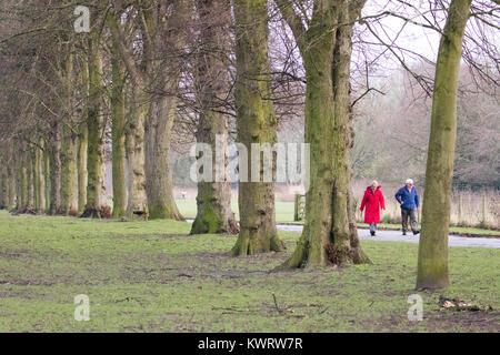 Januar Northwich, Cheshire, UK Wetter. Eine kalte bewölkten Tag an Marbury Country Park, Cheshire als ederly Paar - Stockfoto