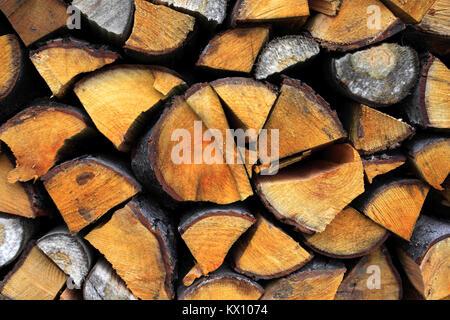 Stapel von Holz auf einem Wald Wiese in Podkarpacie Provinz, Polen - Stockfoto