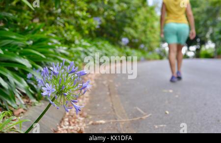 Junge Frauen, die fit und aktiv, Sunshine Coast, Queensland, Australien - Stockfoto