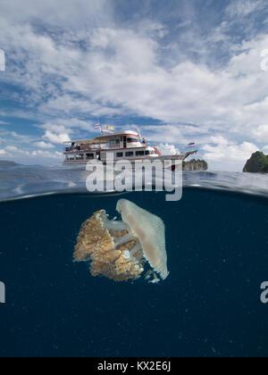 Über/Unter Aufnahme einer Qualle underneith ein tauchboot - Stockfoto