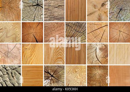Große Sammlung Von Verschiedenen Holz  Texturen. Natürliche Hintergrund.    Stockfoto