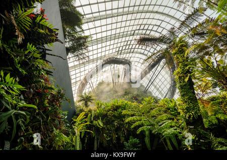 Tropische Berg zusammen mit Pflanzen und Wasser fallen in Cloud Forest Kuppel bei Garten an der Bucht. Ein Mann - Stockfoto