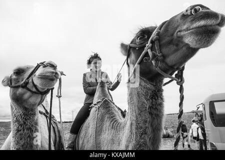 Mongolin reiten Kamel, Kharakhorin, Mongolei - Stockfoto