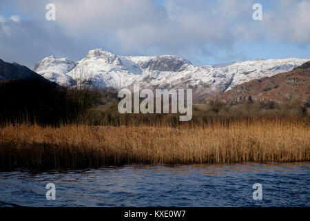 Langdale Pikes von Elter Wasser, Lake District, England - Stockfoto