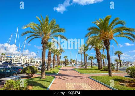 Strandpromenade mit Palmen in Puerto Marina. Benalmadena, Provinz Malaga, Costa del Sol, Andalusien, Spanien - Stockfoto
