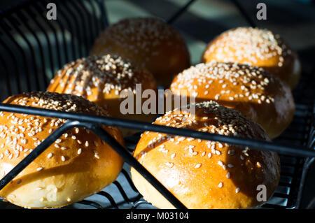 Brötchen für Burger - Stockfoto