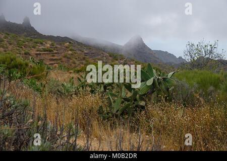 Blick auf Teno Gebirge - Stockfoto