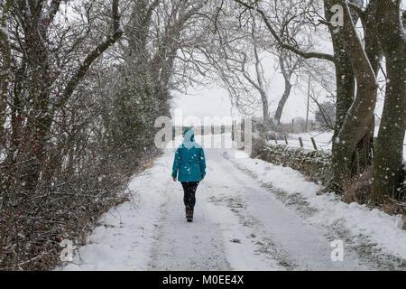 Teesdale, County Durham, UK. Sonntag, den 21. Januar 2018. UK Wetter. Eine Frau geht an einem Feldweg als schweren - Stockfoto