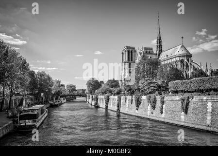 Notre Dame de Paris und die Seine, Paris, Frankreich - Stockfoto