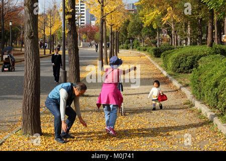 OSAKA, Japan - 22. NOVEMBER 2016: die Menschen besuchen Blätter im Herbst in Osaka Castle Park in Japan. Osaka gehört - Stockfoto
