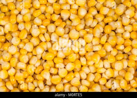 Dekorative Textur aus gekochtem Mais Getreide. Viele schöne gelbe Mais Saatgut als Hintergrund. - Stockfoto