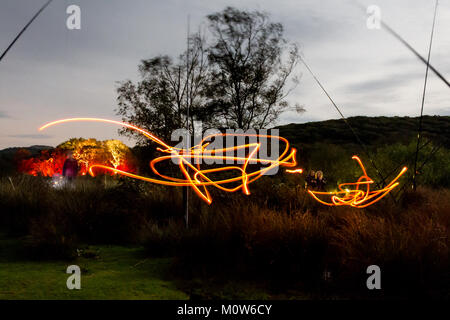 Mark Anderson dunklen Funken Stück Glühwürmchen in der für die Vögel Ynyshir rspb - Stockfoto