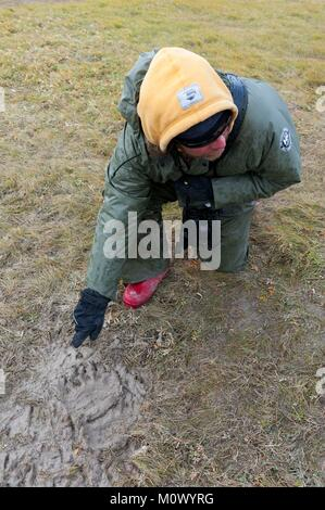 Kanada, Manitoba, Provinz, die Hudson Bay, Footprint eines Eisbären (Ursus maritimus) - Stockfoto