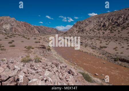 Argentinien, San Juan Provinz, Barreal, Rio de los Patos Tal beladen mit Schwemmland, das Tal, in dem allgemeine - Stockfoto
