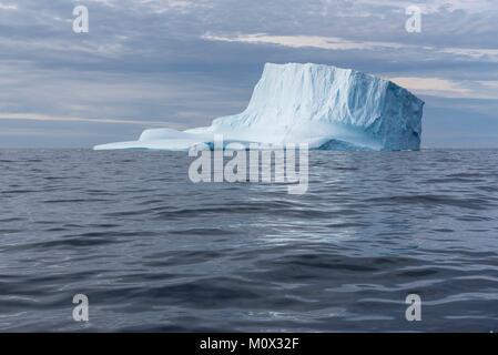 Grönland, Sermersooq, Ammassalik Fjord, Eisberg - Stockfoto