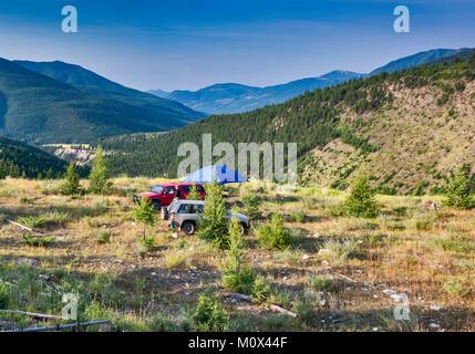 Campingplatz am Brauer Creek Forest Service Road, Purcell Mountains, in der Nähe von Invermere, Britisch-Kolumbien, - Stockfoto