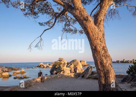 Frankreich, Korsika, Porto Vecchio, Palombaggia, Strand von Tamaricciu - Stockfoto