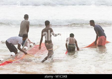 Akurala Strand, Sri Lanka - Dezember 2015 - einheimische Fischer, die Haspel in einem riesigen Netz, das ist eine - Stockfoto