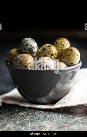 Frische guail Eier in der Schale. - Stockfoto