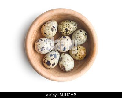 Frische guail Eier in der Schale auf weißem Hintergrund. - Stockfoto