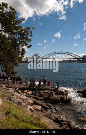 Mrs Macquaries point Sydney Harbour Sydney New South Wales, Australien - Stockfoto