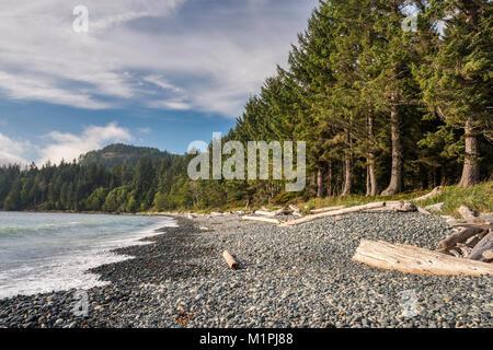 Wellen, Treibholz am Pacific Pebble Beach, Französisch Beach Provincial Park, Southern Vancouver Island, British - Stockfoto