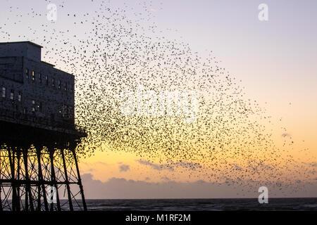 Blackpool, Lancashire. UK Wetter. 1. Februar, 2018. Herrlicher Sonnenuntergang über der North Pier als Stare in - Stockfoto