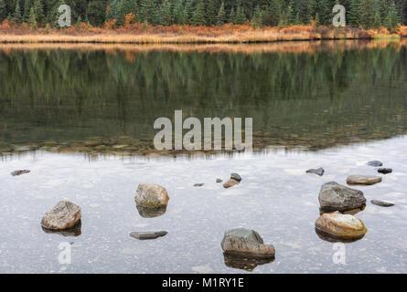 Noch ein Teich in Denali National Park bietet einen ausgezeichneten Spiegel die Herbstfarben der Alaska Tiaga zu - Stockfoto