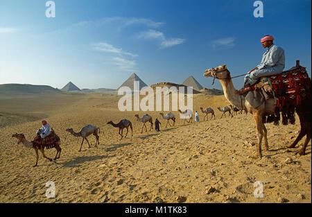Ägypten, Kairo. Pyramiden von Gizeh oder Gizeh. Männer, Camel drivers führende Kamele in der Wüste in der Nähe von - Stockfoto