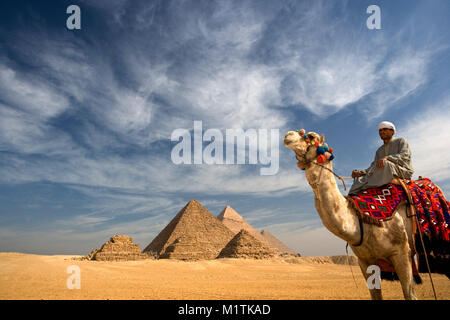 Ägypten, Kairo. Pyramiden von Gizeh oder Gizeh. Mann, Kamel Fahrer auf dem Kamel in der Wüste in der Nähe von Pyramiden. - Stockfoto