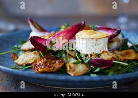 Topinambur und gegrilltem Ziegenkäse Salat mit Chicorée und Rakete - Stockfoto