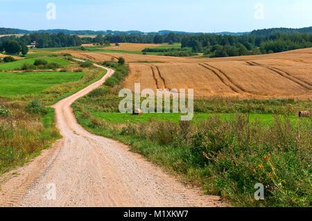 Schöne Straße in ein Feld, eine breite Schotterstraße in einem Feld - Stockfoto