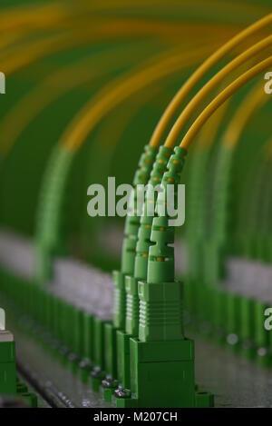 Glasfaser-Netzwerk-Switch mit einigen gelben optische Netzwerk-Kabel ...