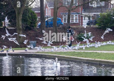 Northampton, Großbritannien 6. Februar 2018. Wetter. Einen sehr kalten und grauen Morgen in Abington Park als Mann - Stockfoto