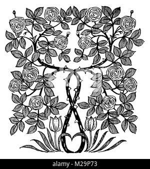Rosenstrauch Fries, ornamentalen Linie Illustration von Architekt und Künstler Mackay Hugh Baillie Scott von 1895 - Stockfoto