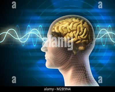Menschlichen Kopf und Gehirn. Verschiedene Arten von Kurven durch die Aktivität des Gehirns auf Hintergrund angezeigt. - Stockfoto