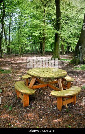 Ein rustikales Holz- Picknick Tisch und Bank in einem Buche im Sommer gelegen. - Stockfoto