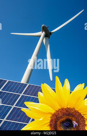 Sonnenblume, blauen Solarzellen und Windkraftanlagen, Umwelt und Klimawandel Konzept - Stockfoto