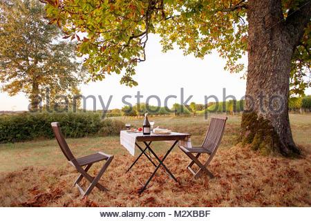 Auf Tisch und Stühle unter Baum mit Blätter im Herbst mit Weinbergen Mittagessen im Hintergrund - Stockfoto