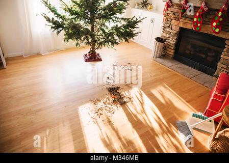 Tannennadeln auf Wohnzimmer Erdgeschoss nach dem Einrichten einer Weihnachtsbaum - Stockfoto