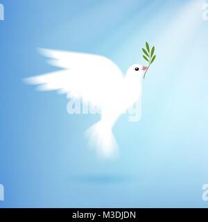 Taube des Friedens mit Olive Branch - Stockfoto